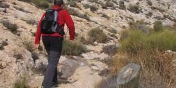 Patronato Municipal de Deportes Almería - Rutas y Senderos - Bayyana-El Palmer