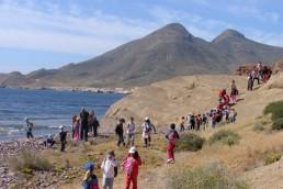 PMD anima familias Playa de Los Muertos
