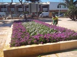 Servicios municipales - Portal CESPA
