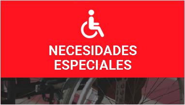 acceso a necesidades especiales