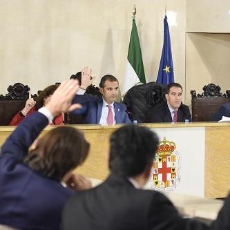 El Pleno ratifica la modificación del PGOU promovida por Cruz Roja para la construcción de su nueva sede en la Rambla Obispo Orberá