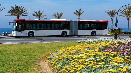 Ayuntamiento línea bus