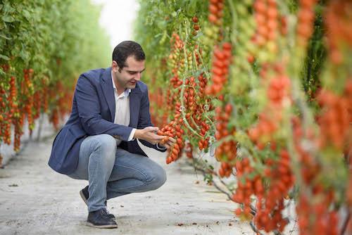 Almería 2019 Fruit Logística