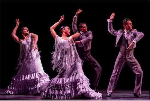 Cultura Flamenco Almería
