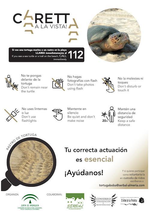 Proyecto Caretta Playas Almería