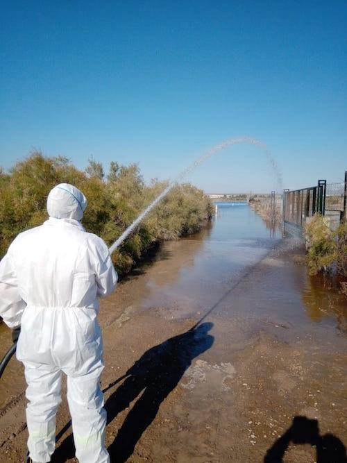 Fumigación plagas inundaciones Almería