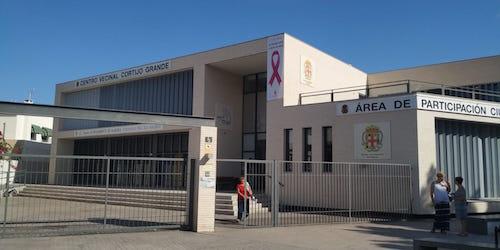 Lazo Rosa Ayuntamiento Almería