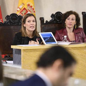 Pleno Ayuntamiento Almería Labella