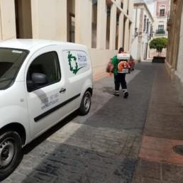 Ayuntamiento Almería desinfección