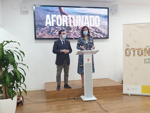 Ayuntamiento Almería planificación plenos