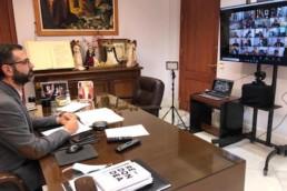 Alcalde Almería pleno telemático