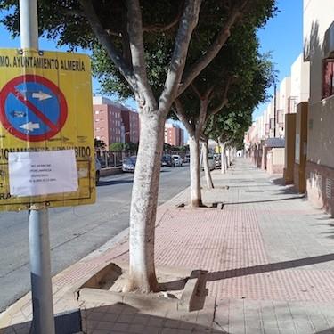 Limpieza intensiva barrios Almería
