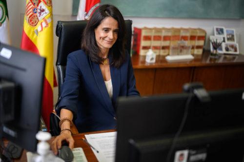 Pleno Ayuntamiento Almería Lorca