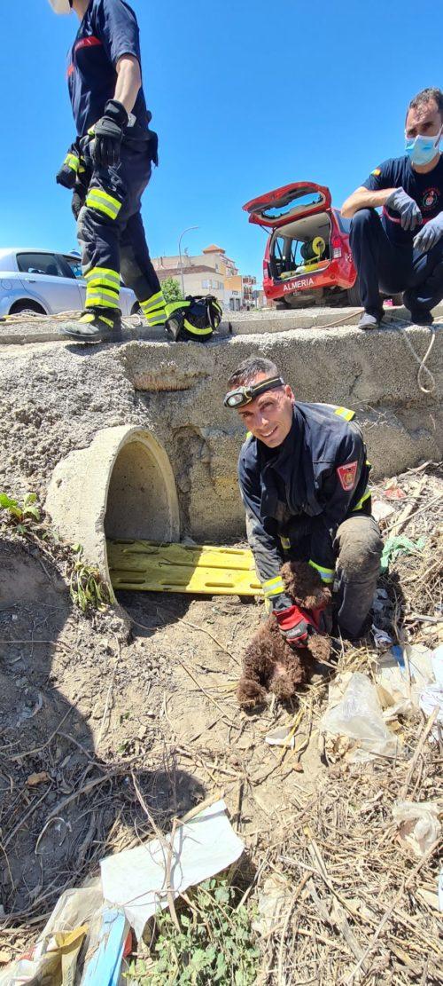 Bomberos Almería rescate cachorro