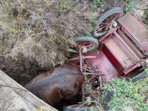 Rescate caballo bomberos Almería