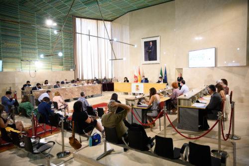 Pleno ordinario Ayuntamiento Almería