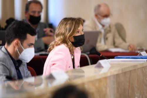 Plenos ordinario Ayuntamiento Almería