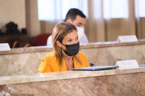 Pleno Ayuntamiento Almería