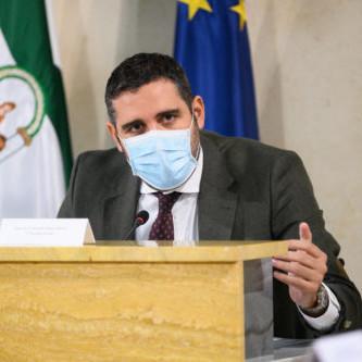 Pleno Ayuntamiento Almería Alonso